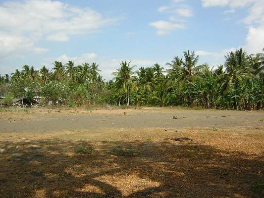 land-singaraja5