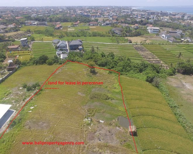 land-lease-pererenan35are