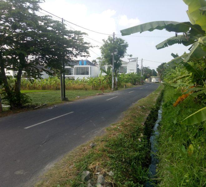 land-sale-canggu-babakan01
