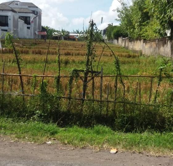 land-canggu1